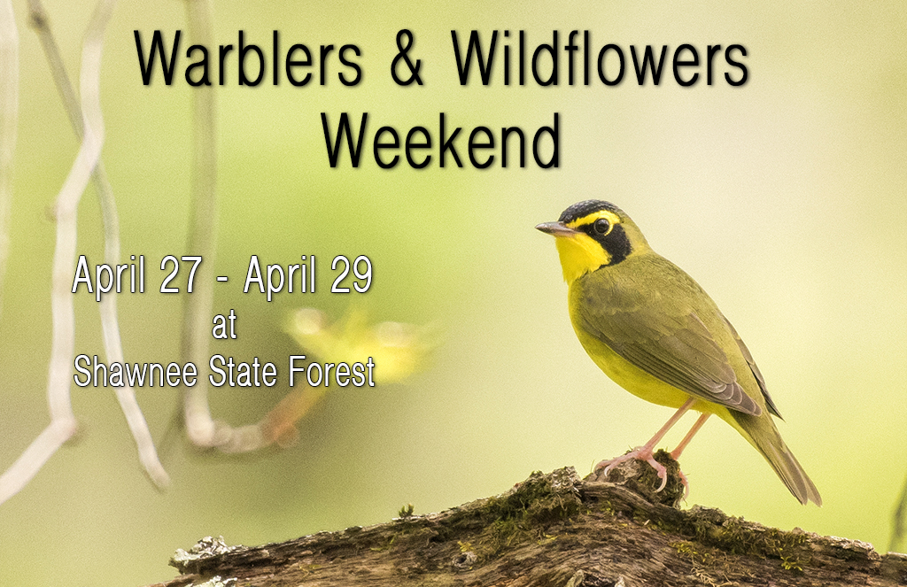 2018 Warblers & Wildflowers Weekend