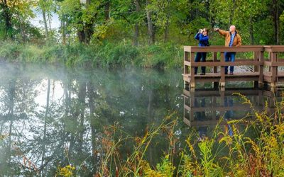 May Bird Walk at Morgan Swamp, Ashtabula County – May 20