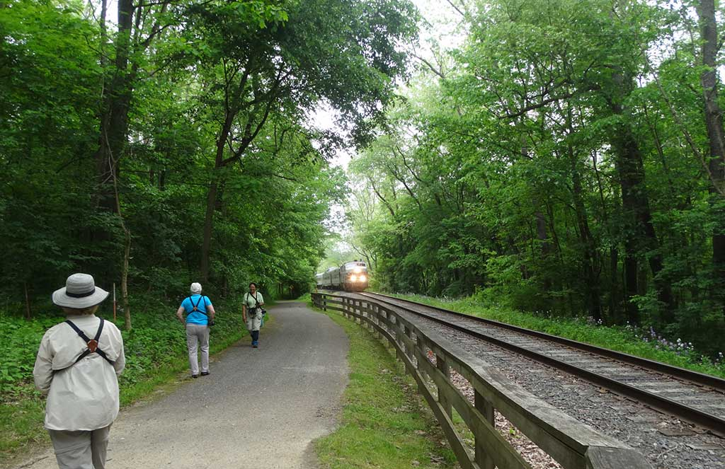 2019 Bird Walk – May 25 – Cuyahoga Valley National Park