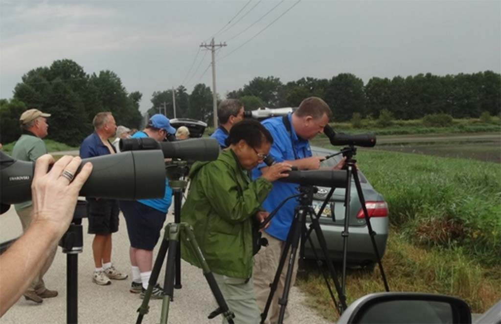 2019 Bird Walk – August 31 – Fall Shorebird Birding with the OOS