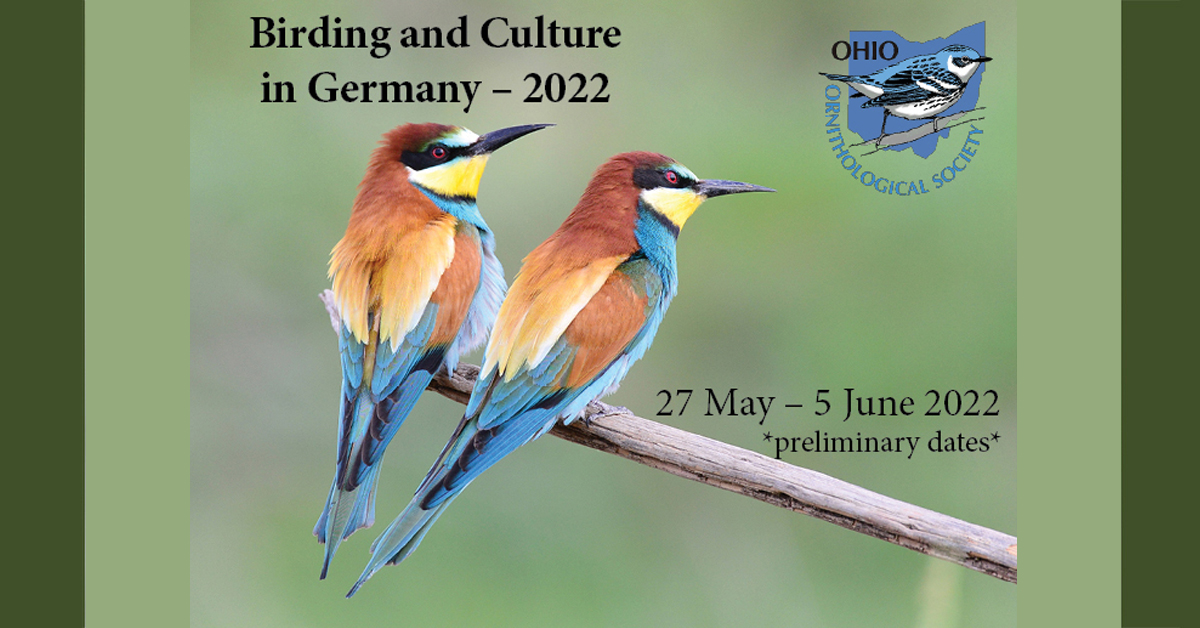 Birding Germany with the OOS in 2022!