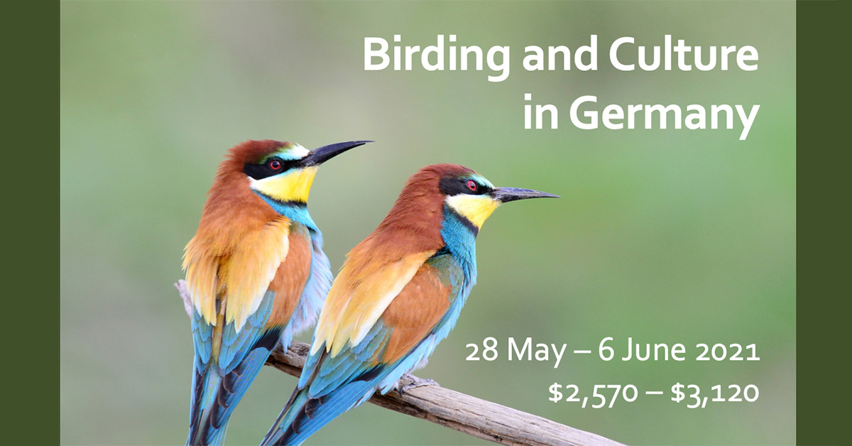 Birding Germany with the OOS in 2021!
